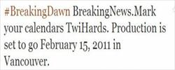 breaking dawn twitter image