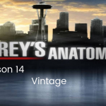 New Grey's Anatomy Season 14 Is Hinted To Be Vintage & More, New Details