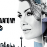 The Next New Grey's Anatomy Episode 5 Of The Current Season 14 Is Getting Delayed
