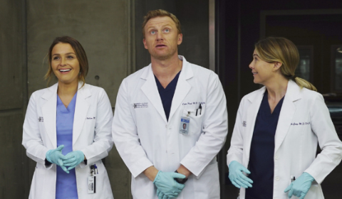 Grey's Anatomy Season 14 Just Received Extra Great News From ABC