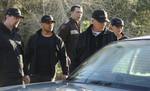 New NCIS Season 15's Next, New Episode 20 Is Getting Delayed. New Airdate Revealed