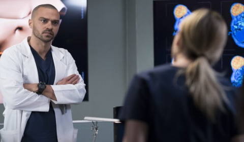 New 'Grey's Anatomy' Season 14, April 26, 2018 Episode 21 Storyline Teasers Revealed By ABC