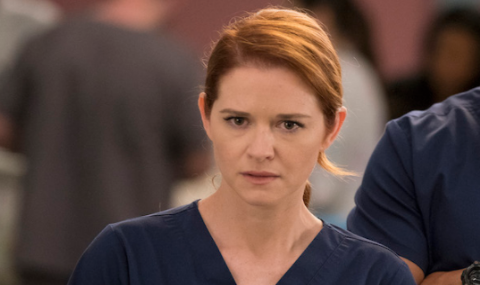 Grey's Anatomy April Kepner Star Sarah Drew Fired Back At Hostile Fans