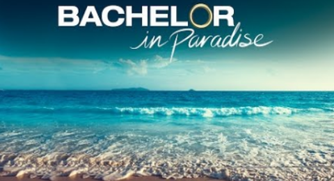 A Recent 'Bachelor In Paradise' 2018 Couple Already Decided To Take A Very Big Relationship Step