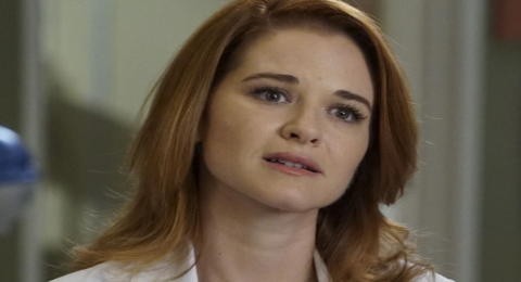 Grey's Anatomy Former April Kepner Star Sarah Drew Recently Spoke About Her Departure Again