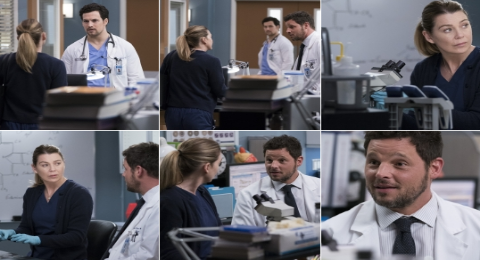 New Grey's Anatomy Season 15, March 7, 2019 Episode 16 Spoilers Revealed By ABC