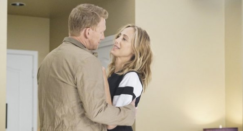 Grey's Anatomy Season 16 Spoilers: Timeline Jump, Meredith & Andrew Major Fallout And More