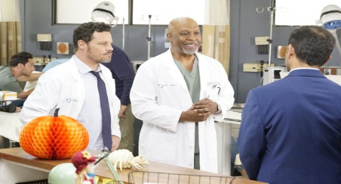 New 'Grey's Anatomy' Spoilers For Season 16, October 31, 2019 Episode 6 Revealed